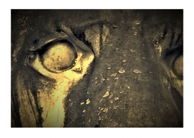 münchen minimal: Das Auge des Löwen (Feldherrnhalle)