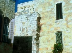 Rosen_in_Jerusalem_G2